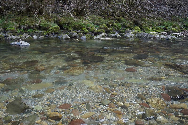 fiume-serio-3