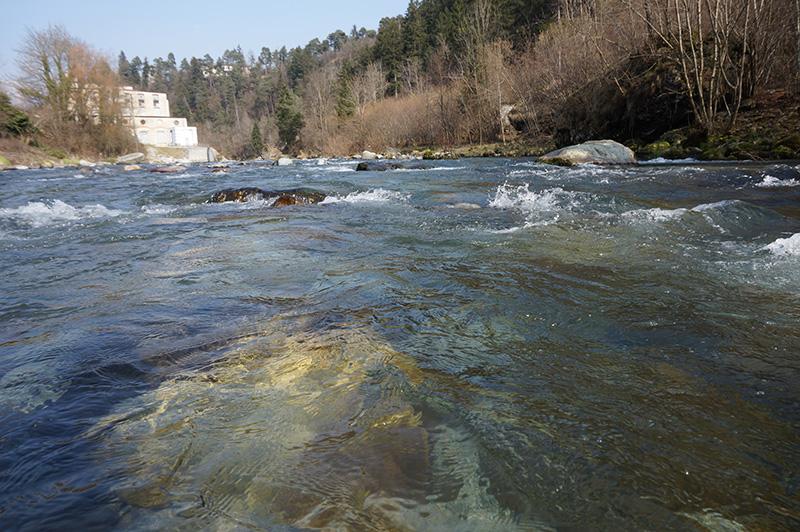 fiume-serio-4