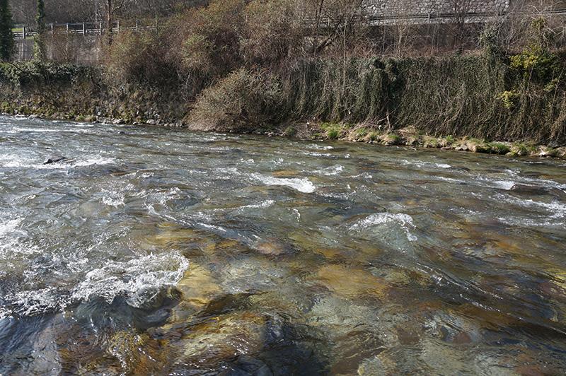 fiume-serio-5