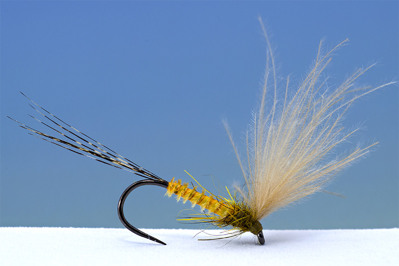 yellow-dun-fly-tied--using-Slovak-style-by-Lucian-Vasies